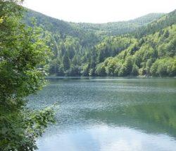 Au Clos de la Chaume campsite: Grand Ballon Lake in the Vosges