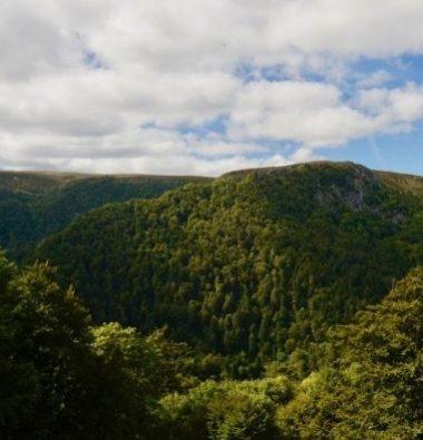 Au Clos de la Chaume campsite: Panorama Din the Vosges