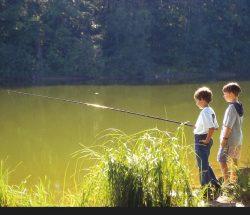 Children fishing in the Vosges, Au Clos de la Chaume campsite