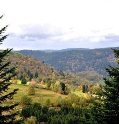 Au Clos de la Chaume campsite: Visit the Vosges Corcieux