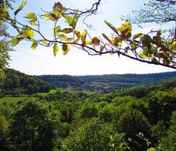Au Clos de la Chaume campsite: View of Montenach