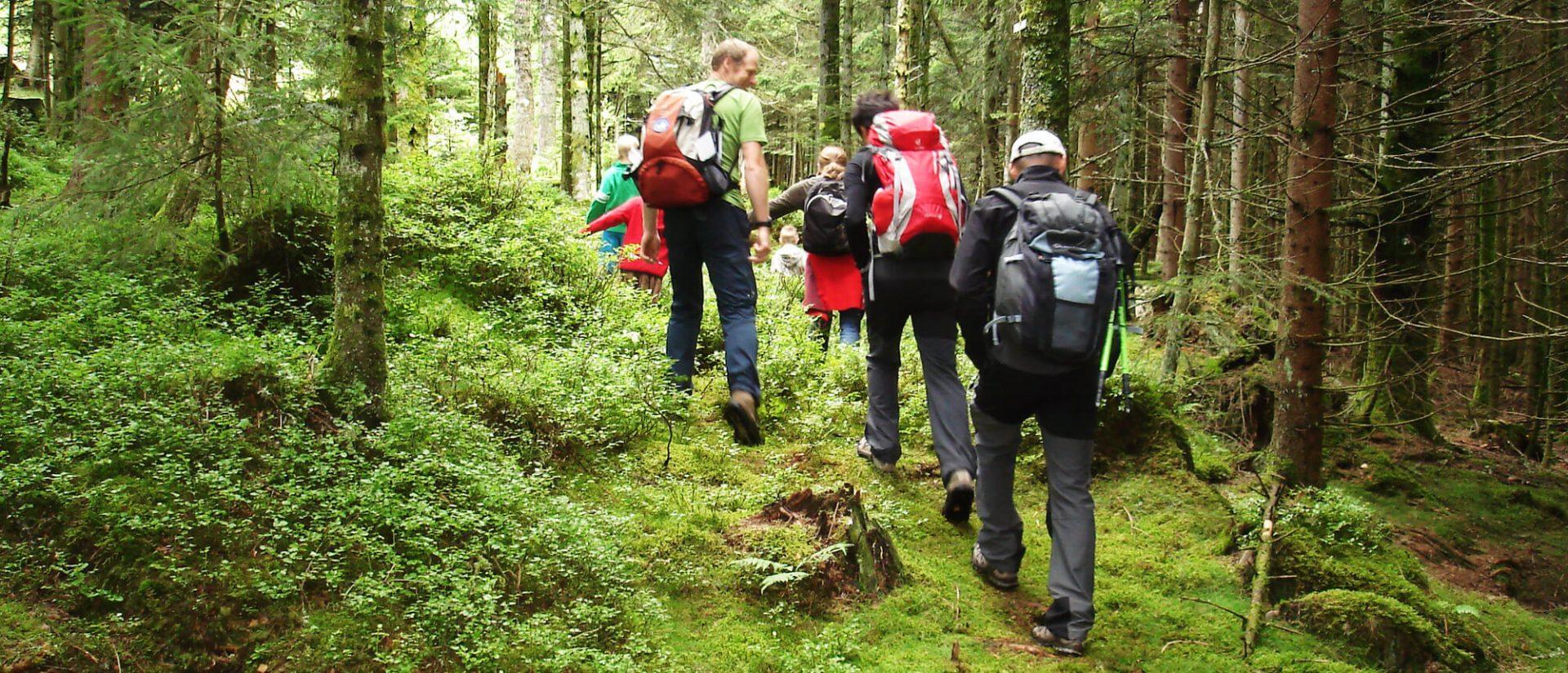 Camping Clos De La Chaume : Balade Nature En Famille Accompagnée Au Camping Au Clos De La Chaume