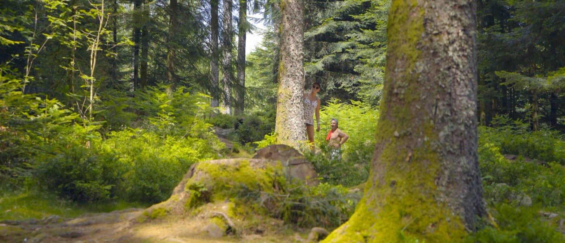 Camping Clos De La Chaume : Petit Bois Au Camping Sites Et Paysages Vosges Alsace Lorraine